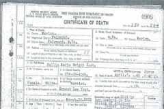 Nellie's death certificate