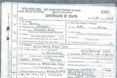 Nellie's death certificate