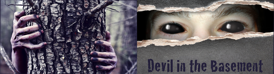 Devil in the Basement by Charlotte Laws